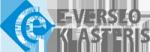 E-klasteris